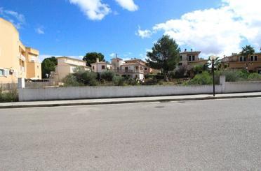 Grundstücke zum verkauf in Santa Margalida