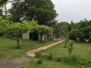 Finca rústica en Venta en Burgohondo - El Tiemblo - Cebreros - Burgohondo / Burgohondo