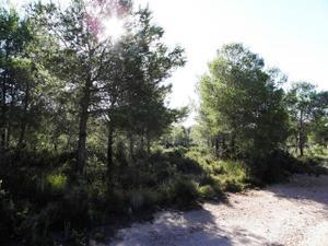 Terreno Residencial en Venta en Sant Jordi D'alfama / L'Ametlla de Mar