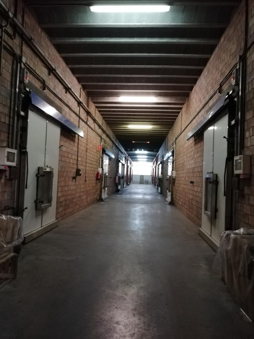 Nave industrial  Garrigues - juneda
