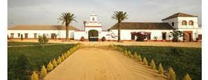 Terreno en Venta en Finca Proxima a Alcorcon / Zona Pueblo