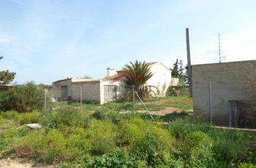 Terreno de alquiler en Carretera de Elche al Altet, Torrellano