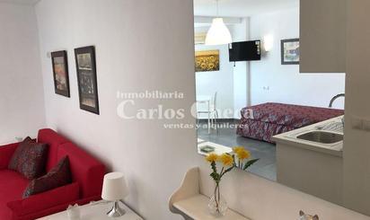Estudios de alquiler en Vélez-Málaga