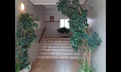 Plantas bajas de alquiler en Villaviciosa de Odón