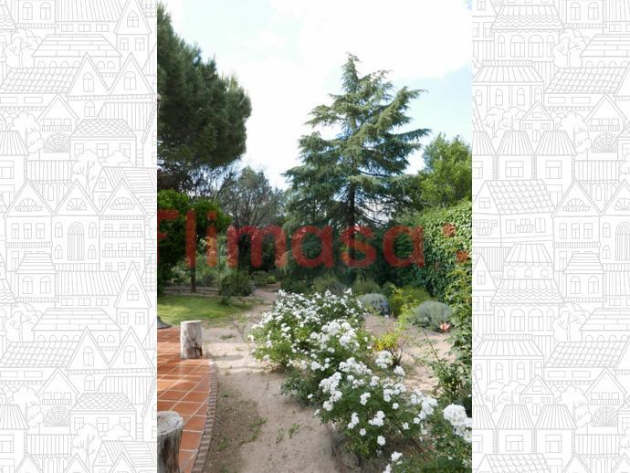 Photo 47 of House in Junto Ciudad Financiera Del Bsch / Casco Antiguo, Boadilla del Monte