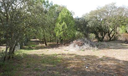 Terrenys en venda a Villaviciosa de Odón