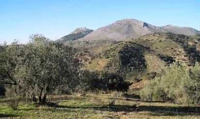 Finca rústica en venta en Prolongacion Arroyo del Ciervo, Los Molinillos y P, Archidona