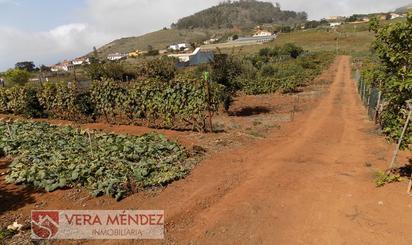 Finca rústica en venta en Tacoronte - Los Naranjeros