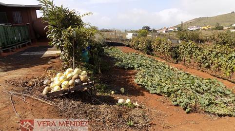 Foto 2 de Finca rústica en venta en Tacoronte - Los Naranjeros, Santa Cruz de Tenerife
