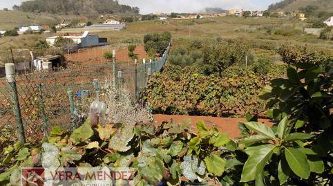 Foto 5 de Finca rústica en venta en Tacoronte - Los Naranjeros, Santa Cruz de Tenerife