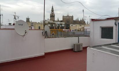 Pisos de alquiler con terraza baratos en Jardines de Rafael Montesinos, Sevilla