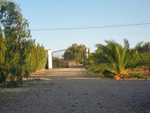 Finca rústica en Venta en San Juan del Puerto, Zona de - San Juan del Puerto / San Juan del Puerto