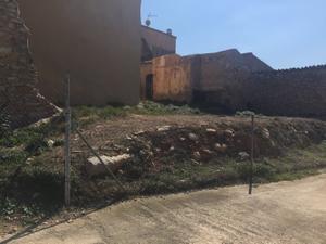 Finca rústica en Venta en La Bisbal del Penedès, Zona de - Masllorenç / Masllorenç