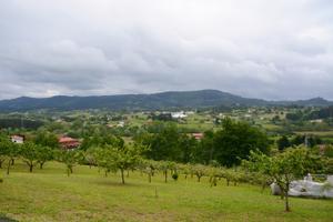 Terreno Urbanizable en Venta en Mungia, Zona de Larrabizker / Mungia