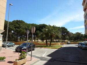 Piso en Alquiler en Guardamar del Segura ,pinada / Guardamar Centro - Puerto y Edén