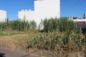 Terreno Urbanizable en Venta en Alcalde Sebastián Henríquez / Teror