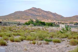 Terreno Urbanizable en Venta en Alt Vinalopó - Salinas / Salinas