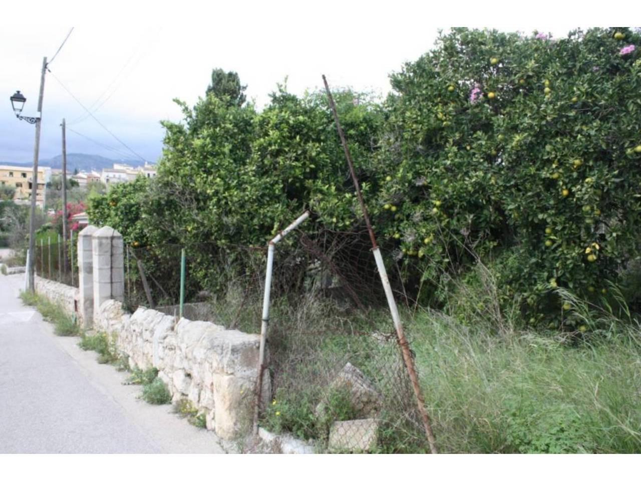 Solar urbano  Campanet. Solar situado en una calle ancha de campanet con las vistas tota
