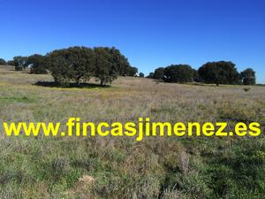 Terreno en Venta en Talavera de la Reina / Ribera del Tajo