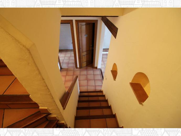 Foto 15 de Finca rústica en El Palou Alt / Sant Pere de Ribes Centro, Sant Pere de Ribes
