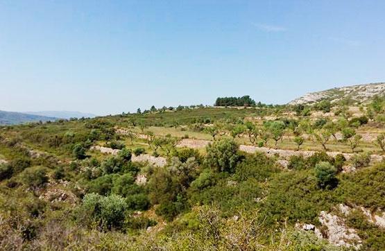 Solar urbà  Paraje plans. Parcela ubicada en paraje plans en Sant Mateu, castellón. se tra