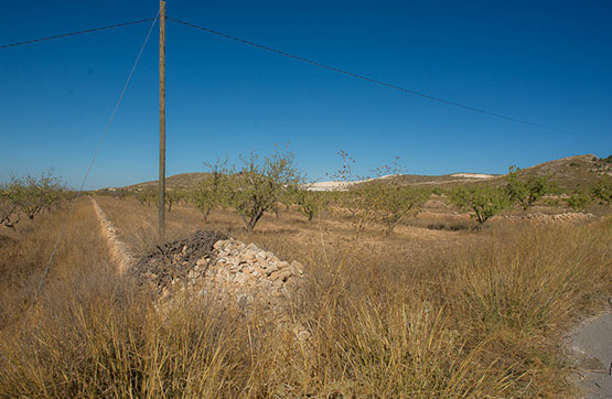 Solar urbà  Centro parcela el llano, polígono 21, parcela 145. Parcela de grandes dimensiones, con 17606 m2. se encuentra en la