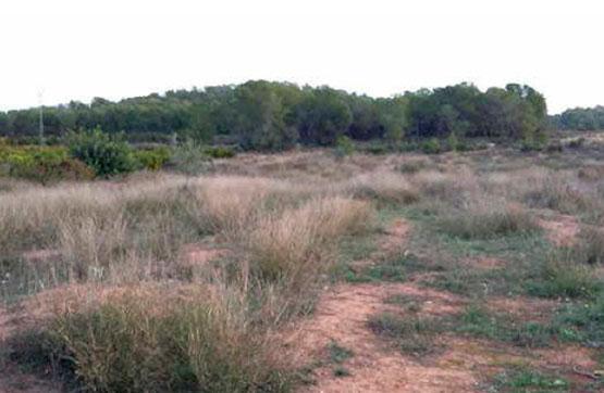 Stadtgrundstück  Calle paraje carreteres, polig 39 parc 317. Suelo en venta en villamarchante (valencia). parcela de suelo rú