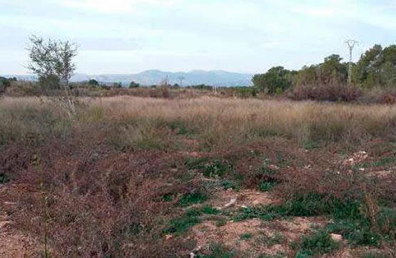 Area edificabile urbana  Calle paraje la pedrera, polig 39 parc 322. Suelo en venta en villamarchante (valencia). parcela de suelo rú