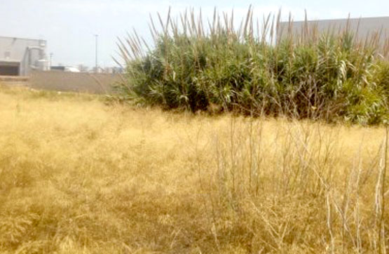 Terrain urbain  Calle manal, manzana ina-2 parc. 4. Gran oferta de suelo en venta situado en calle manal, manzana in