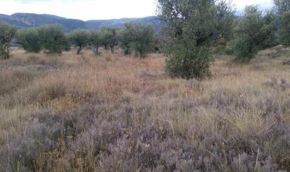 Terrenos en venta en Villamediana de Iregua