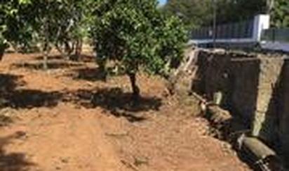 Urbanizable en venta en Calle la Caridad, 67, Tacoronte - Los Naranjeros