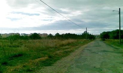 Grundstücke zum verkauf in C/ del Mestral, Torreblanca