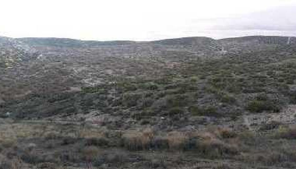 Foto 1 von Grundstücke zum verkauf in Pt Paraje Monte Cuarte Cuarte de Huerva, Zaragoza