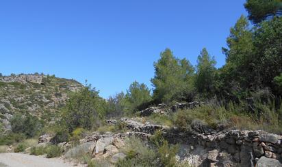 Terreno en venta en Paraje Ajedrea - Pol 11 -, Gaibiel