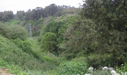 Terreno en venta en Pl Polígono 11, la Carriona, el Carbayedo, Villalegre - La Luz