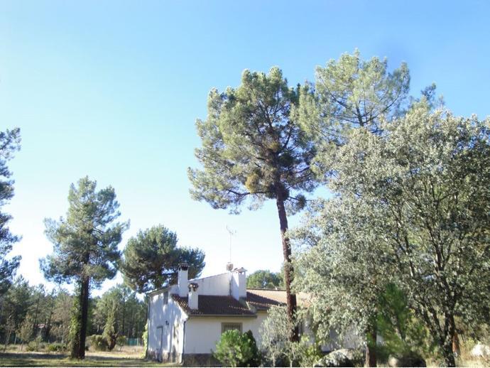 Chalet en marug n en pinar jardin 140846167 fotocasa for Asociacion pinar jardin