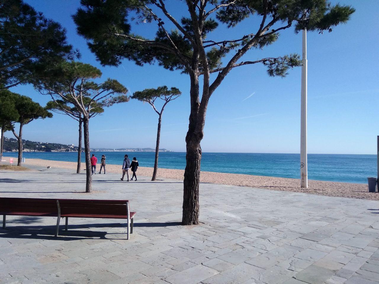 Alquiler Piso en Castell d´Aro. Apartamento en alquiuler 2ª linea de mar platja d´aro