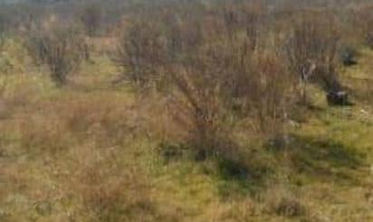Grundstücke zum verkauf in Sector Suztr-1, Chilches / Xilxes