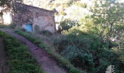 Grundstücke zum verkauf in Camino del Cementerio, Tales