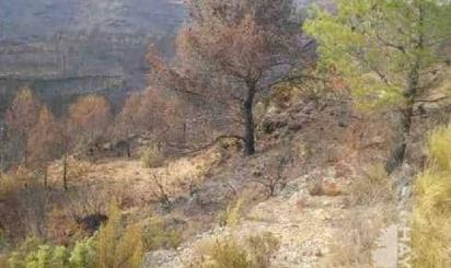 Land for sale in Barranco de la Murta, Macastre