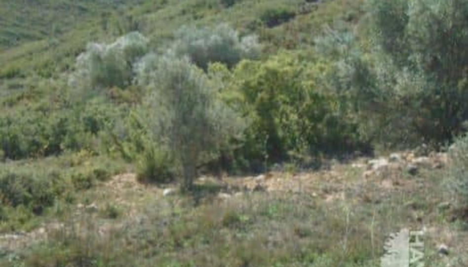Foto 1 von Grundstücke zum verkauf in Talades Les Coves de Vinromà, Castellón
