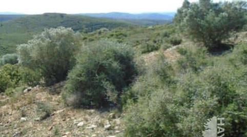 Foto 2 von Grundstücke zum verkauf in Talades Les Coves de Vinromà, Castellón