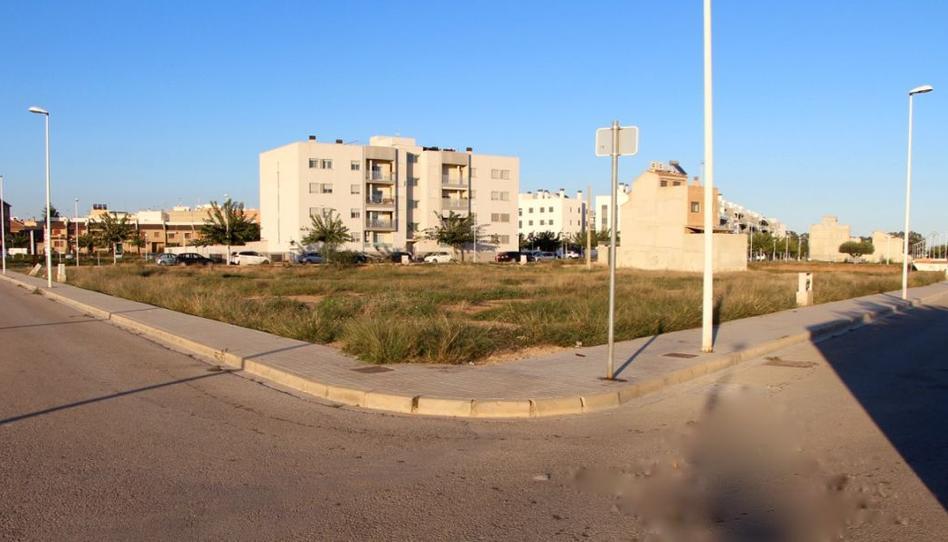 Foto 1 de Terreno en venta en Alfara del Patriarca, Valencia