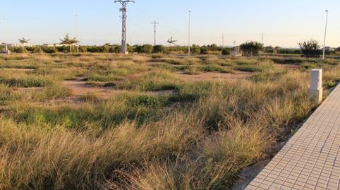 Foto 2 de Terreno en venta en Alfara del Patriarca, Valencia