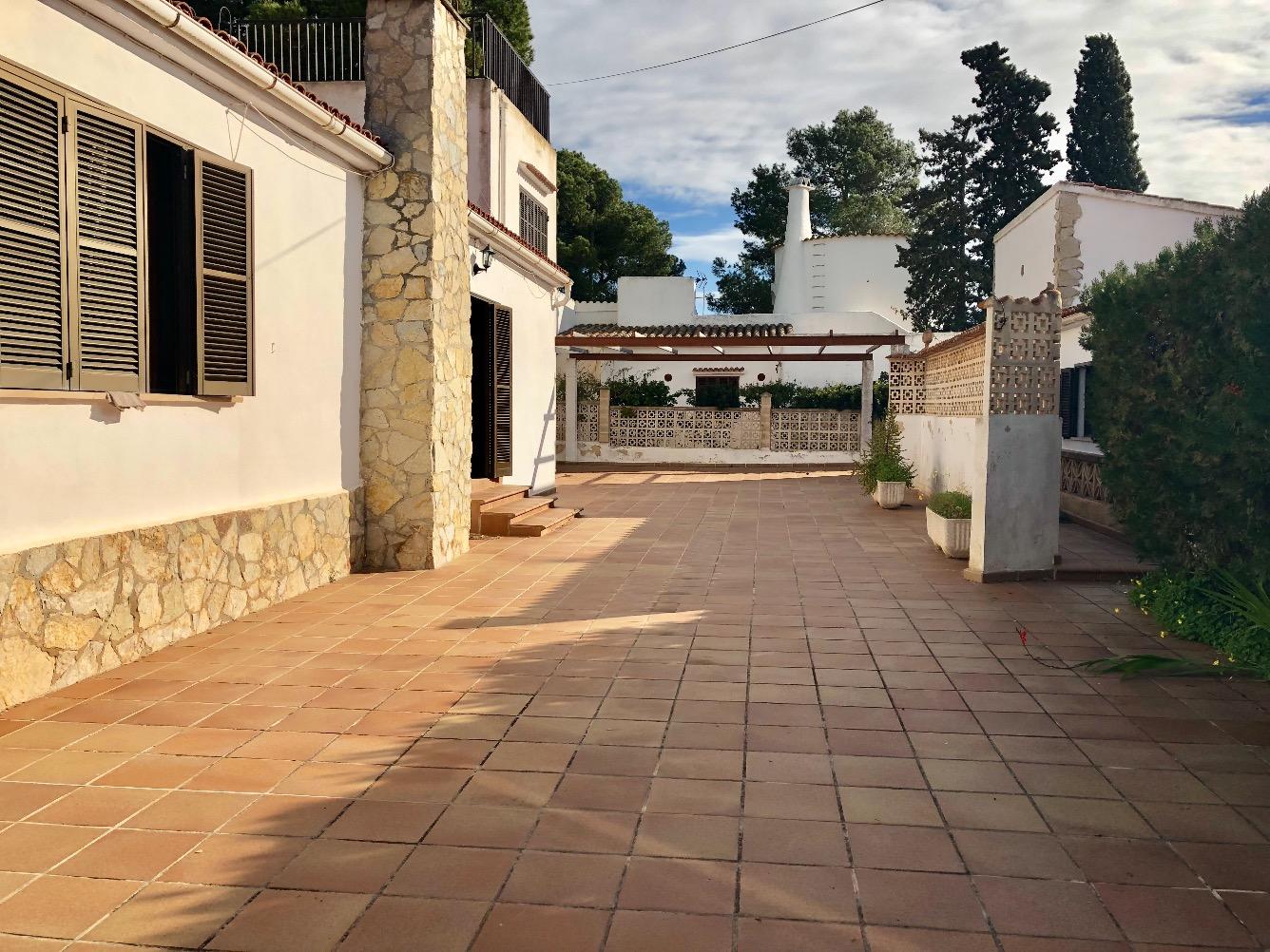 Rental House  Calle ballena