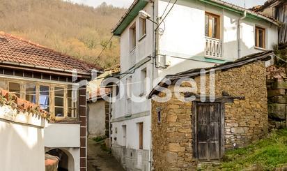 Fincas rústicas en venta en Mieres (Asturias)