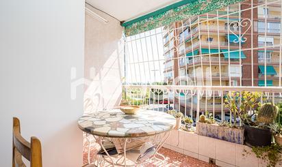 Apartamentos en venta en Alicante / Alacant