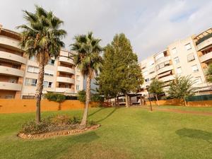 Pisos De Alquiler En Teatinos Universidad Malaga Capital Fotocasa