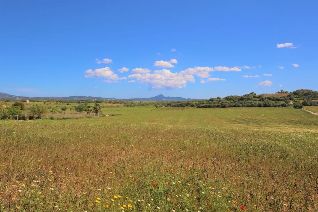 Solar urbà  Vilafranca de bonany. Terreno edificable en villafranca de bonany
