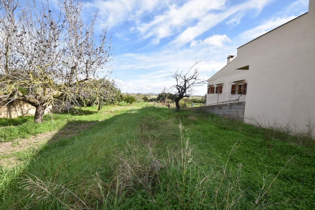 Solar urbà  Vilafranca de bonany. Magnifico terreno edificable